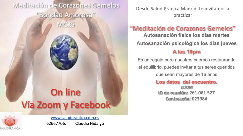 Meditación de Corazones Gemelos  on line